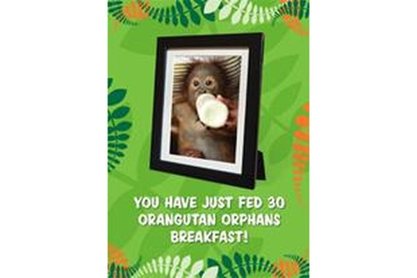 Gift Card - 30 orangutans fed for a month