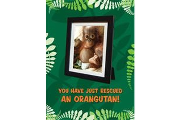 Gift Card - 12 months medicine for an orangutan